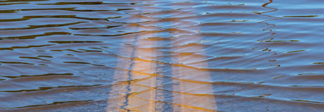 Ripples on a lake